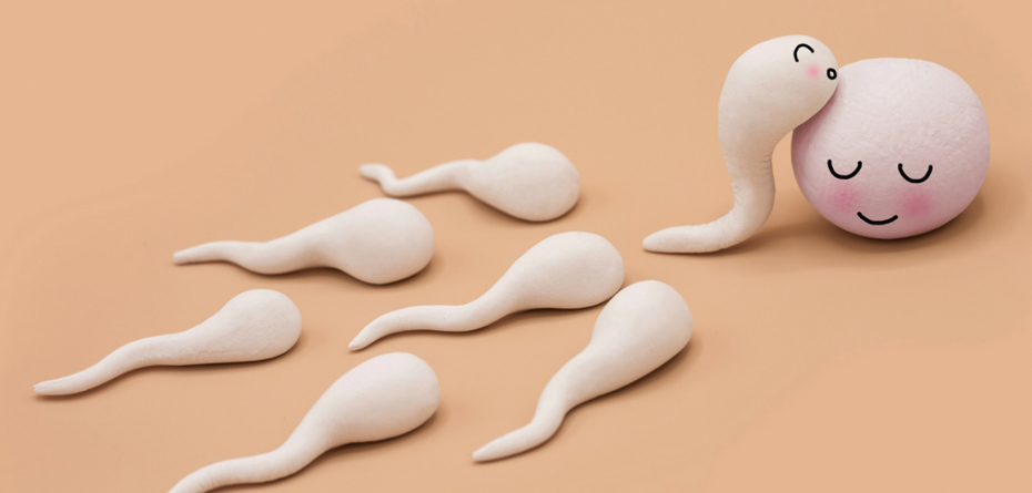 وقتی تعداد اسپرم صفر است چه کار باید انجام داد؟