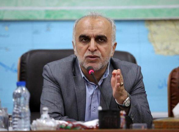 فعالان بخش خصوصی قوانین مزاحم را به وزارت اقتصاد اعلام کنند