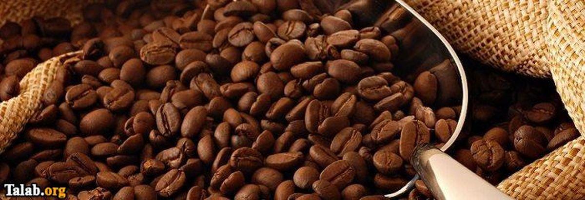 10 خواص فوق درمانی گیاه کافئین