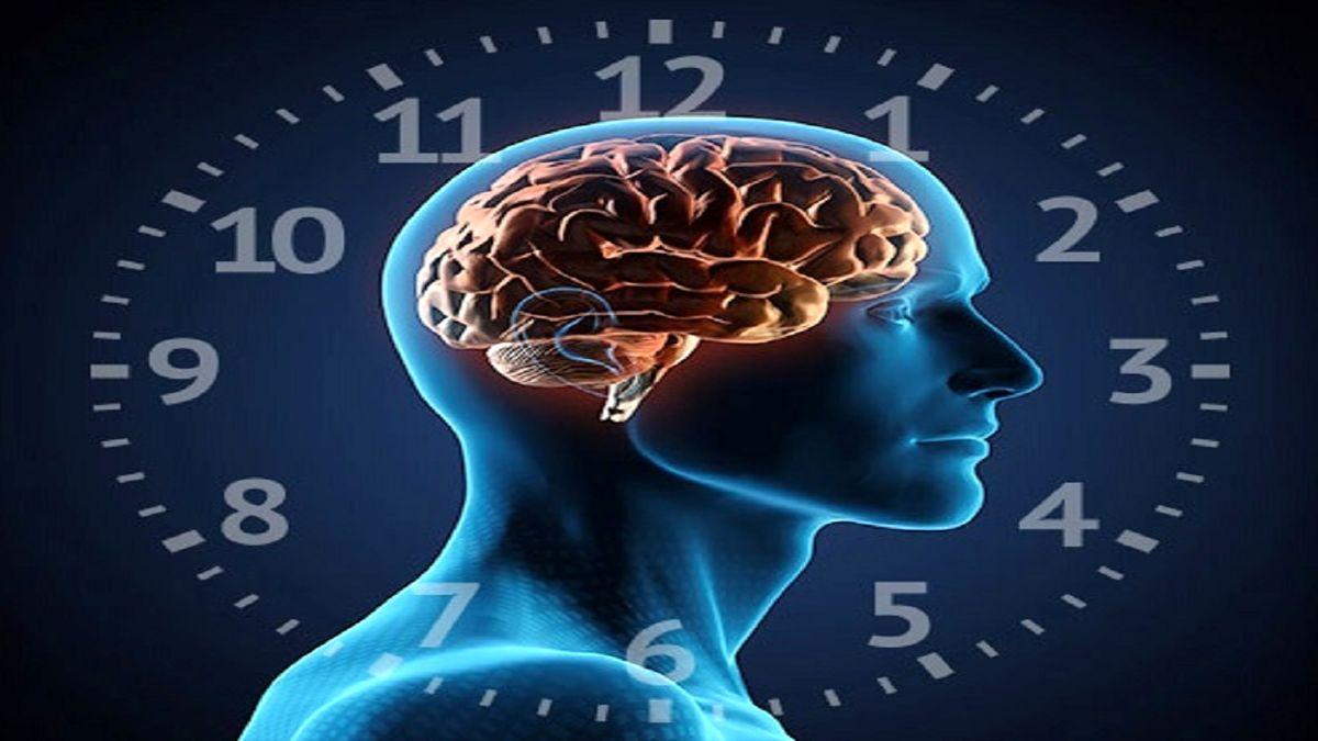 ساعت بدنتان را با درک این نکات حیاتی دریابید