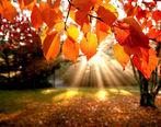 زیباترین اس ام اس های فصل پاییز