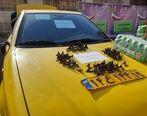 تاکسی اراذل توقیف شد
