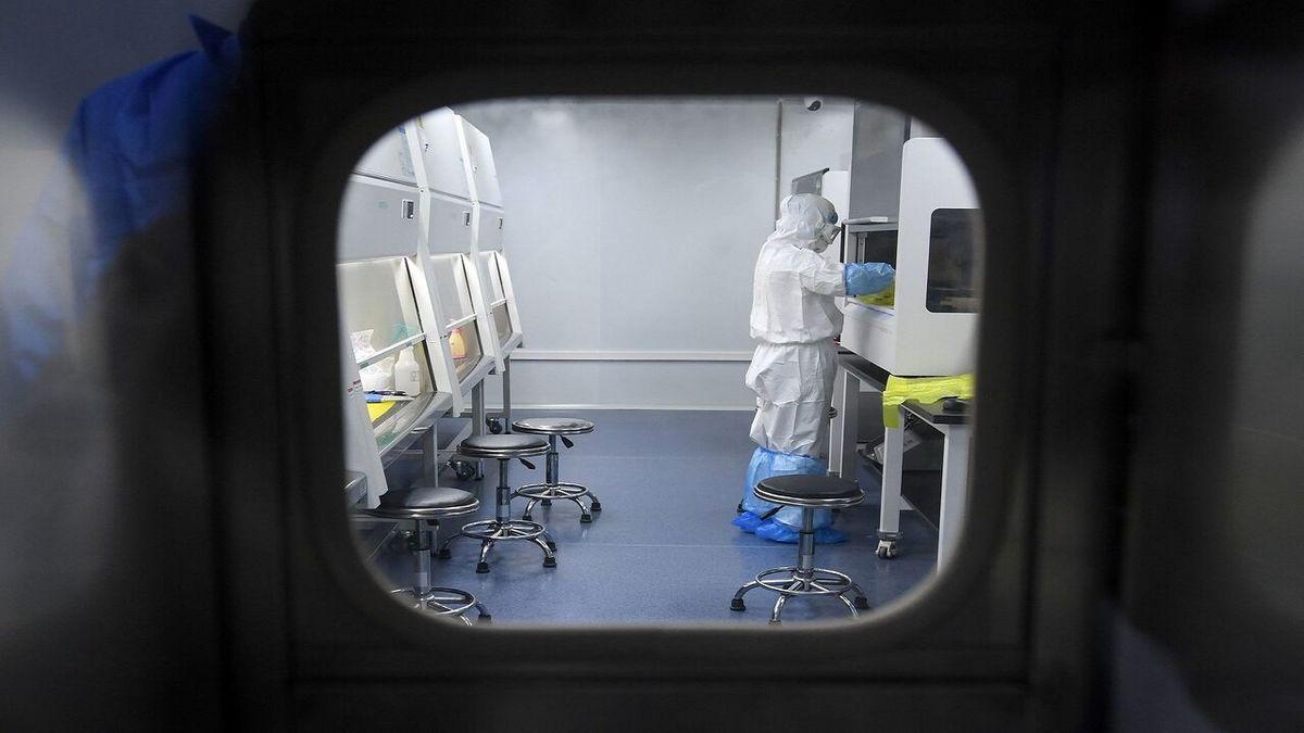 درمان کرونا   خبر خوش محققان ایرانی درباره درمان کرونا + جزئیات