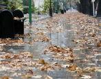 تداوم بارش ها در نوار شمالی کشور