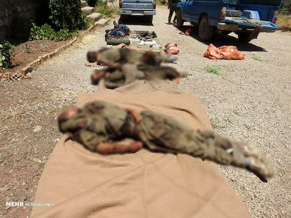 فیلم/ اولین تصاویر از اجساد تیم تروریستی منهدم شده در غرب کشور