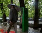ادامه بارشها در روزهای آینده در ۱۰ استان کشور