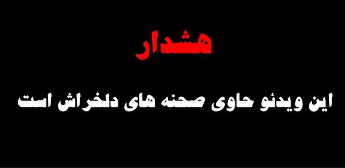 فیلم هولناک از سگ آزاری در مشهد + فیلم