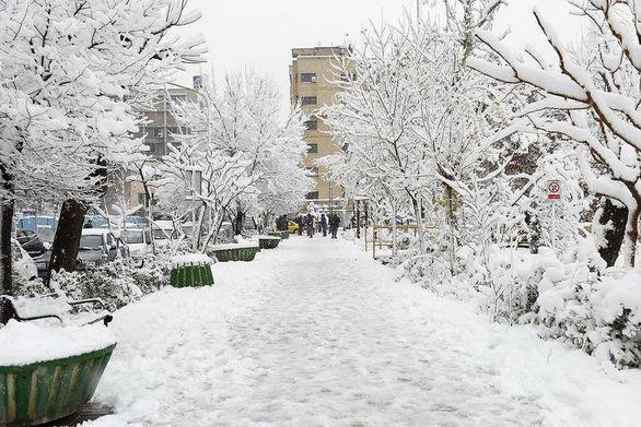 هواشناسی: بارش برف و باران تا پایان هفته در کشور ادامه دارد