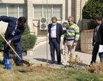 کاشت چندین نهال توسط مسئولین منطقه تهران در هفته منابع طبیعی