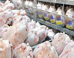 ارزانی قیمت مرغ در راه است / مرغ چقدر می شود؟