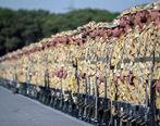شرایط استخدام سربازان اعلام شد+جزییات