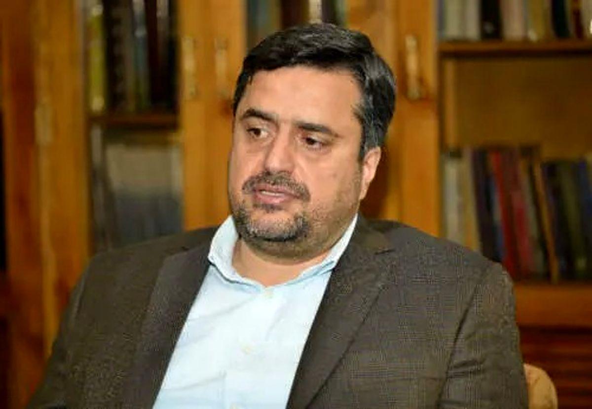 دکتر نادری به عنوان مدیر عامل جدید سرمایه گذاری توسعه معادن و فلزات منصوب شد