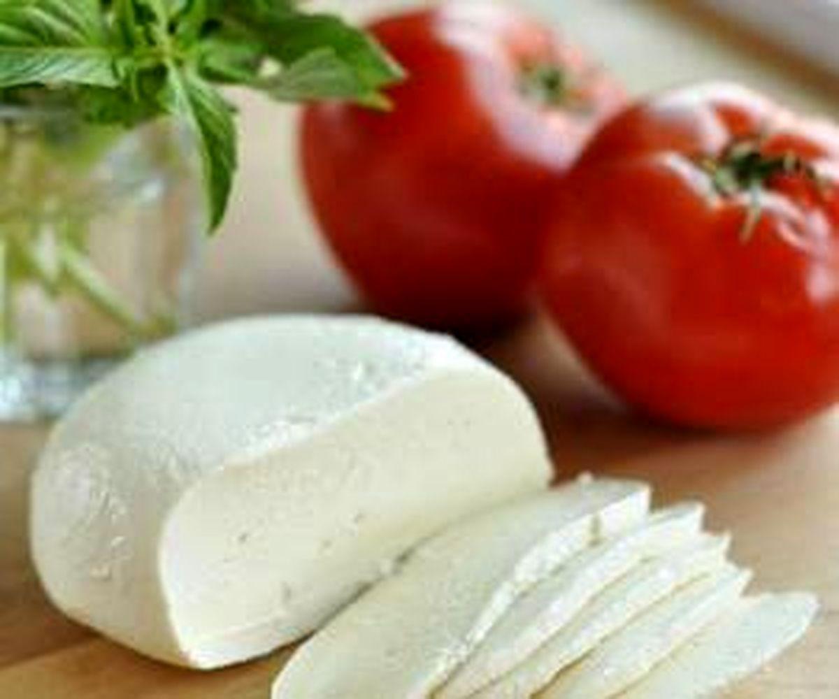 طرز تهیه پنیر خانگی + دستورالعمل