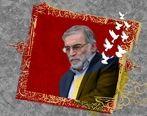 پیام تسلیت مدیرعامل بیمه ایران بمناسبت ترور ناجوانمردانه دانشمند کشورمان