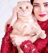 واکنش تند و کوبنده بهنوش طباطبایی به ازدواج دوم همسر سابقش + عکس