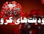 تردد شبانه در تهران ممنوع شد + جزئیات