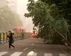 وزش باد شدید در تهران یکشنبه 12 ابان