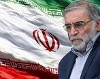 پیام تسلیت مدیرعامل سازمان منطقه آزاد قشم به مناسبت شهادت محسن فخریزاده