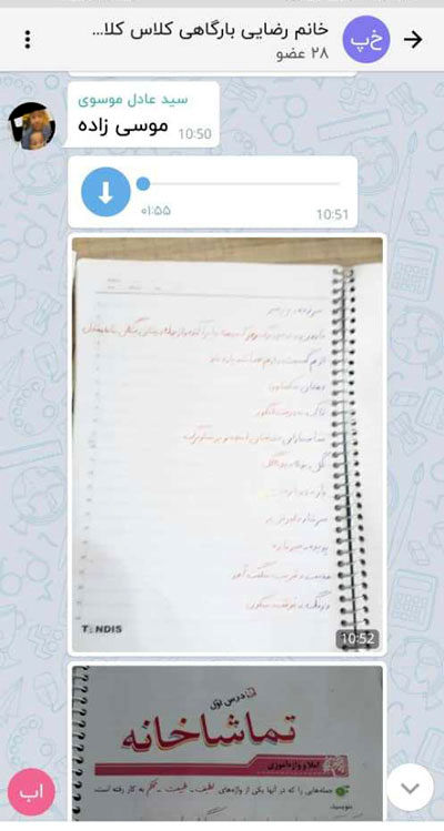 توضیح درباره خودکشی دانشآموز ۱۱ساله بوشهری