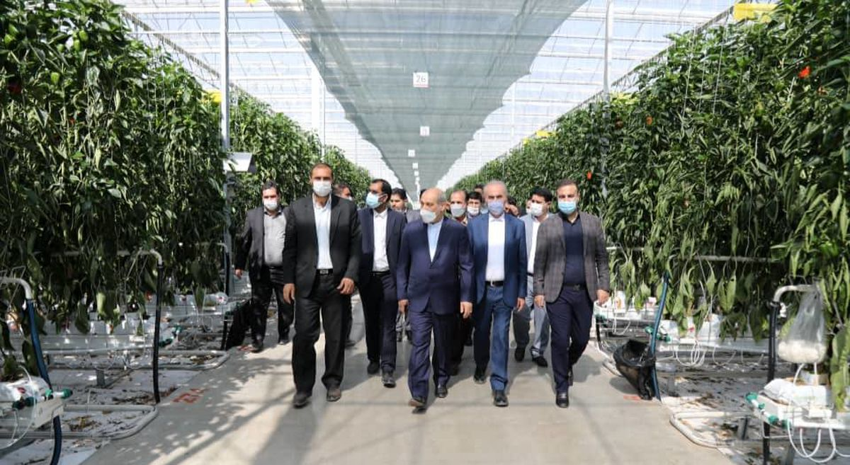 بازدید مشاور رئیس جمهور از ۶ شرکت صنعتی و تولیدی مستقر در منطقه آزاد ارس