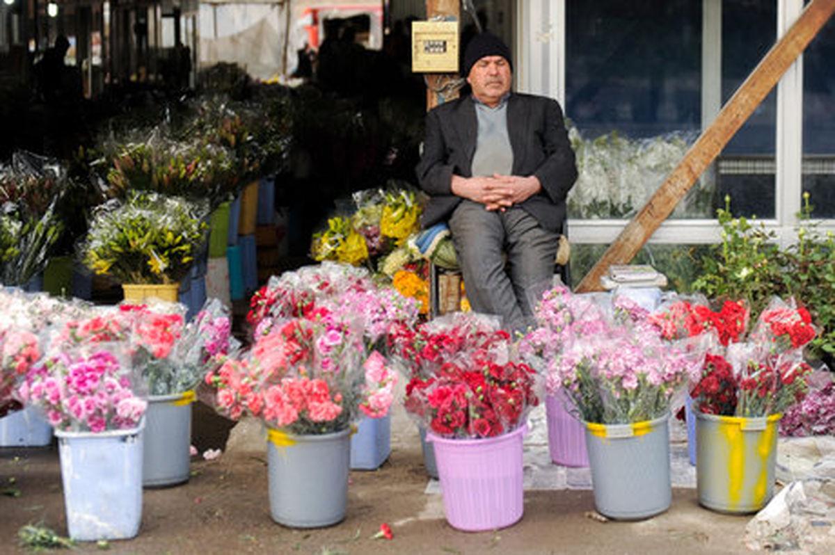 آیا با وایتکس و یخ عمر گل بیشتر می شود؟