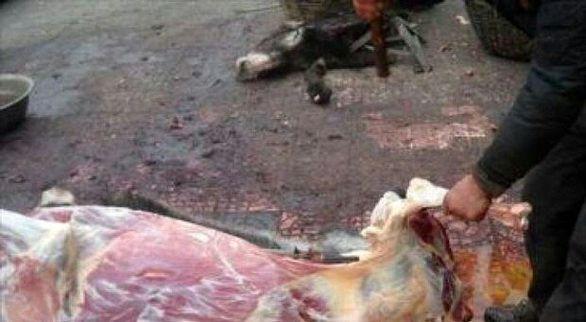 جزئیات دستگیری فروشنده گوشت الاغ در فلاورجان
