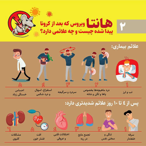 هانتا ویروس چیست و چه علائمی دارد؟