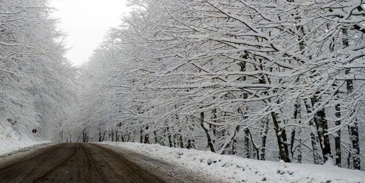 بارش برف در ۱۲ استان کشور