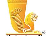 دلایل مثبت های اخیر نماد بانک پاسارگاد در بورس