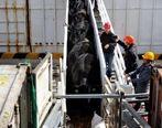 چین واردات گوشت گاو از ۴ شرکت استرالیایی را ممنوع اعلام کرد