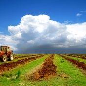 ورود محصولات باغی استان همدان به بورس کالا