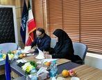همکاری صندوق ضمانت صادرات ایران و بیمه های تجاری برای توسعه صادرات