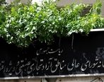 با ابلاغ وزیر صمت؛ مجوز ورود کالاهای ضروری مناطق آزاد صادر شد