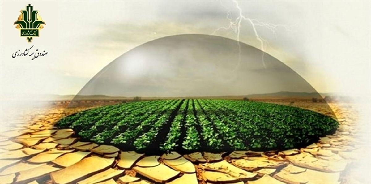 تحقق 50 درصدی پرتفوی ابلاغی صندوق بیمه کشاورزی در پنج ماهه ابتدای سال زراعی جاری