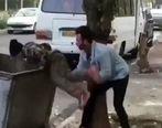 ماجرای کودک زباله گرد چیست + فیلم