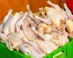 مجوز واردات ۴۵ هزار تن مرغ صادر شد + جزئیات